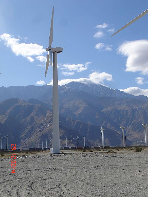 Mountain View Solar Energy Farm, Cultural Resources