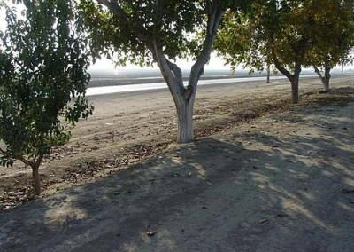 San Emidio Specific Plan, Environmental Impact Report