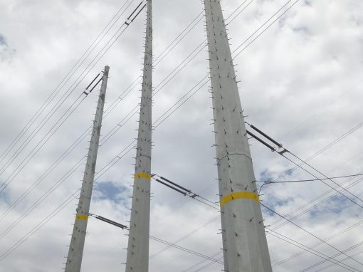 Transmission Line Dismantling